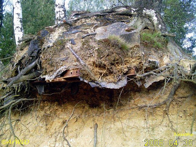 Baum IV