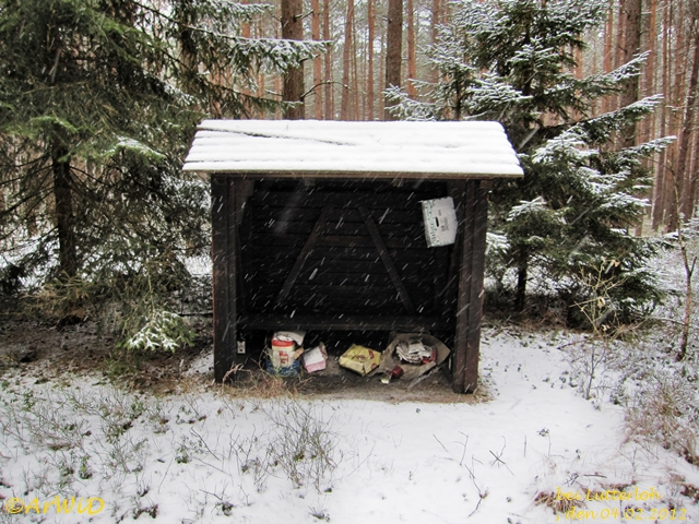Ehemalige Schützhütte Grüner Weg 2012 (1)