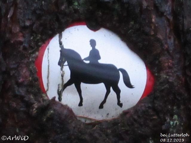 Eingewachsenes Schild Lutterloh (2)