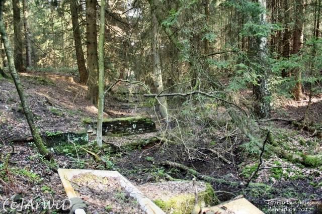 ©Fabrik im Wald bei Schelploh (11)