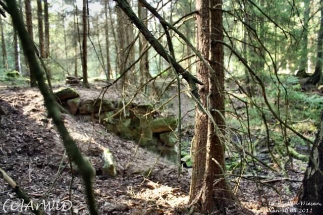 ©Fabrik im Wald bei Schelploh (13)