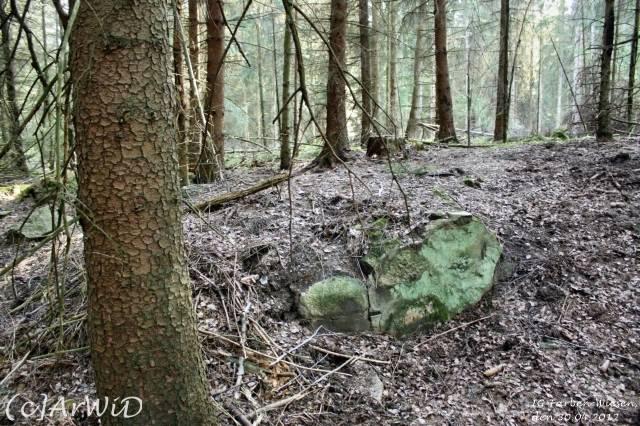 ©Fabrik im Wald bei Schelploh (15)