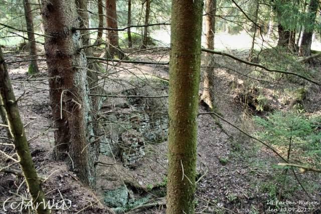 ©Fabrik im Wald bei Schelploh (17)