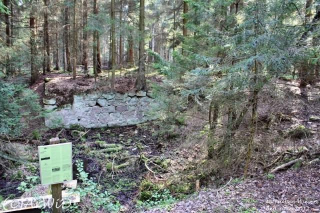 ©Fabrik im Wald bei Schelploh (2)