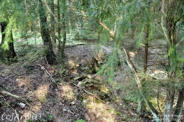 ©Fabrik im Wald bei Schelploh (20)