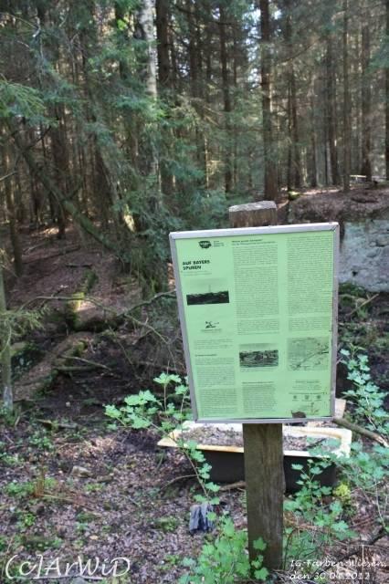 ©Fabrik im Wald bei Schelploh (3)