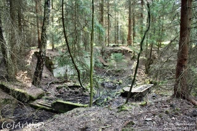 ©Fabrik im Wald bei Schelploh (6)