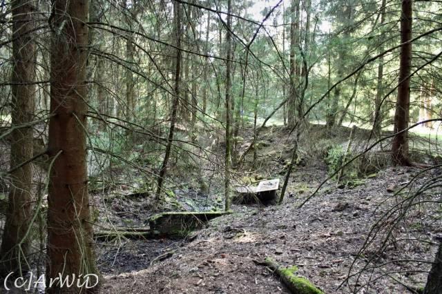 ©Fabrik im Wald bei Schelploh (7)