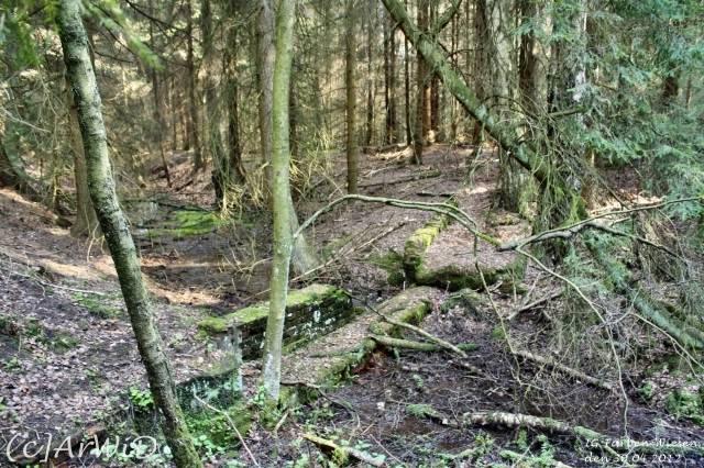 ©Fabrik im Wald bei Schelploh (9)