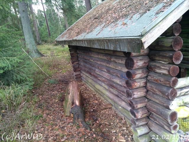 ©Schutzhütte am Hang (10)