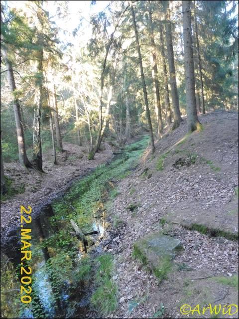 ©Spüren der Rieselwirtschaft (7)
